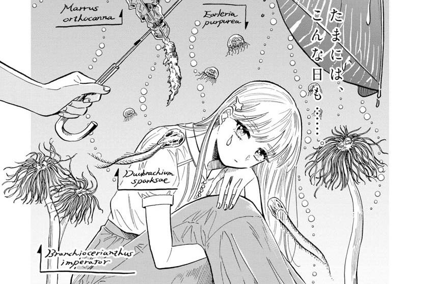 #39「マヨイアイオイクラゲ」